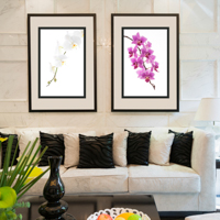 home decoration, framed prints, home decor, fine art, photos
