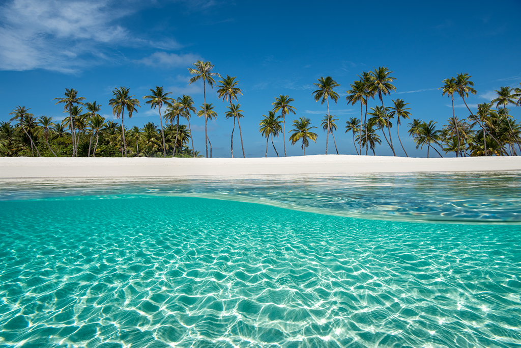 new work, paradise, beach, ocean, maldives, escape, new release